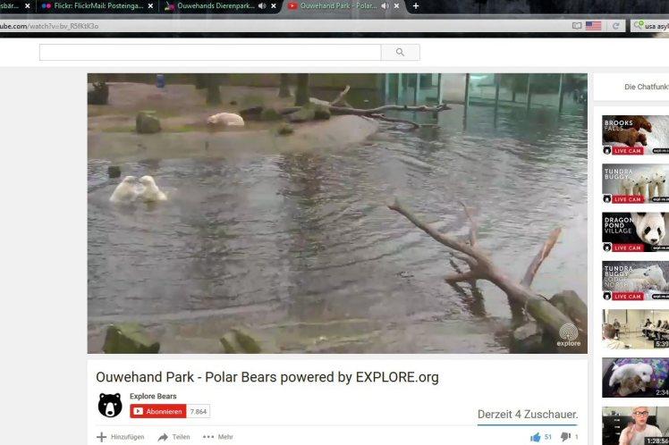 Zoo Rhenen 34a