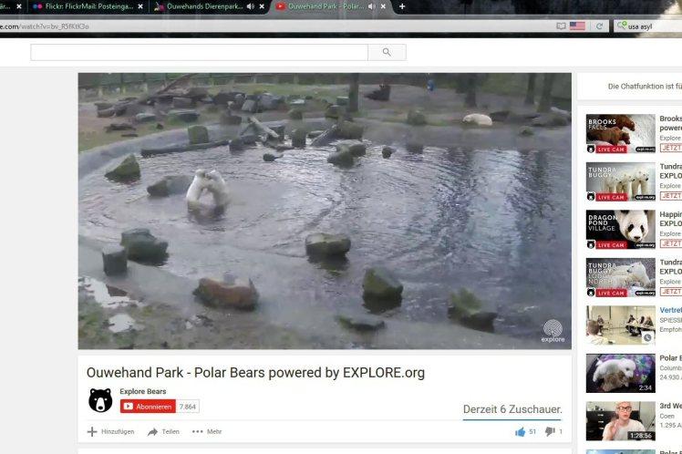 Zoo Rhenen 35a