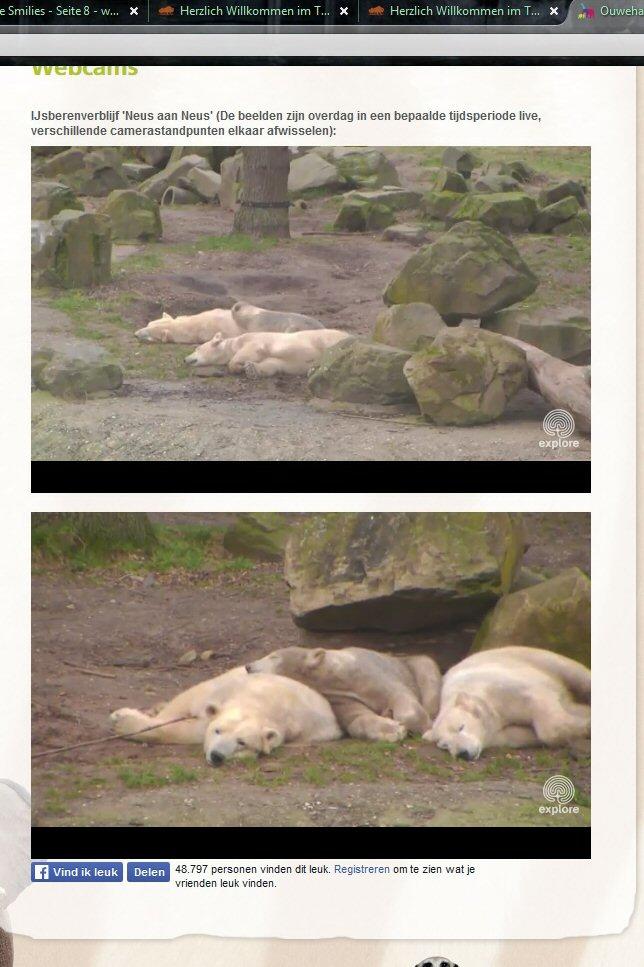 Zoo Rhenen 36b